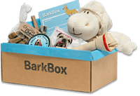 Barkbox Subscription Box for Dogs