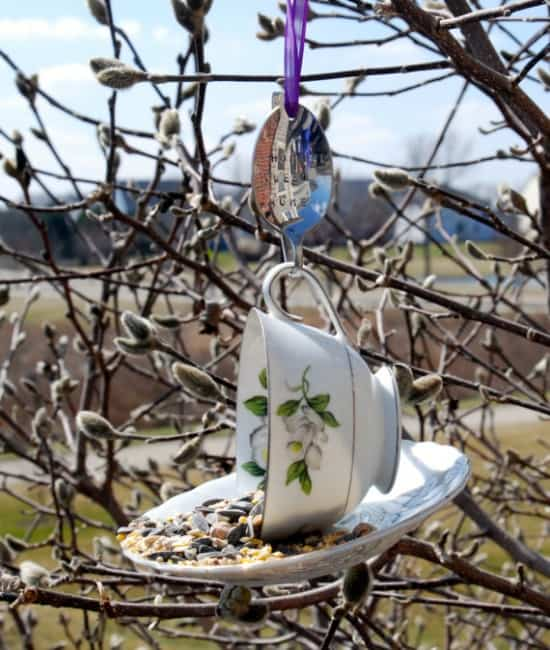 Teacup Bird Feeder from A & K Accents