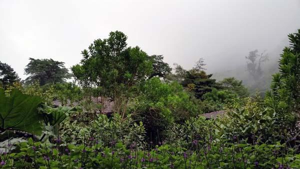El Silencio in Costa Rica