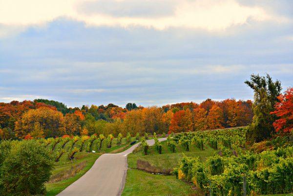 Michigan Bucket List: Michigan Fall Color Tour
